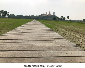 The bridge extends into Rice  fields.