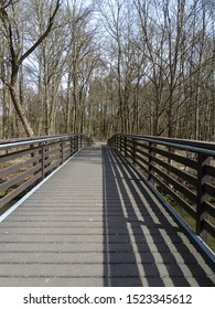Bridge in a Forest, Bavaria/Germany