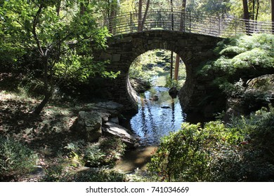 Bridge Of Full Moon At Garvan Woodland Gardens