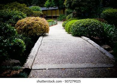 A bridge in Japanese garden