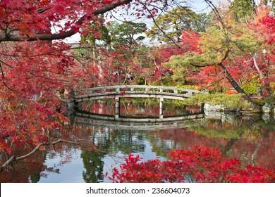 A bridge in a Japanese garden during Autumn season  Eikando Temple, Kyoto, Japan