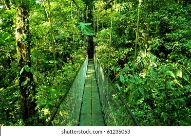 Bridge in the jungle of Costa Rica