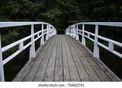 Bridge leading into the forest