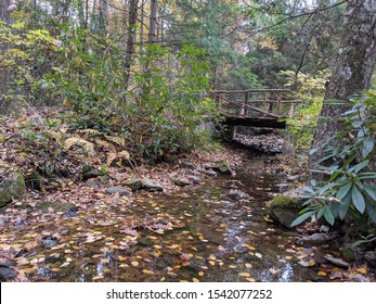 A bridge over a babbling brook in the woods