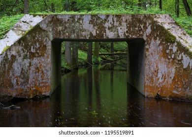 bridge over dark moor water at a moor forest