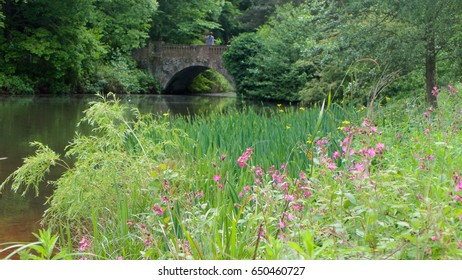 Bridge over the lake at Kenwood house