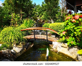 The bridge over the pond with fountain and small waterfall. The area around the pool is full of bushes tree. That are in the public park. Selective focus and copy space.