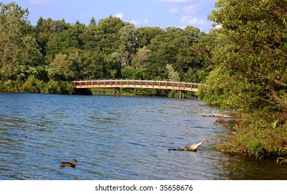 Bridge over river with duck in foreground