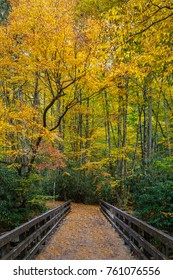 Bridge over River in Great Smoky Mountains National Park with Fall Colors