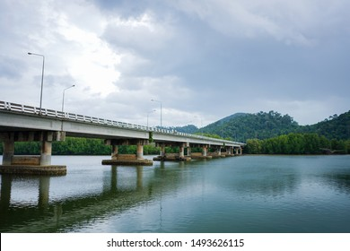 The bridge over the river to the green forest