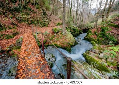 bridge over stream in autumn atmosphere