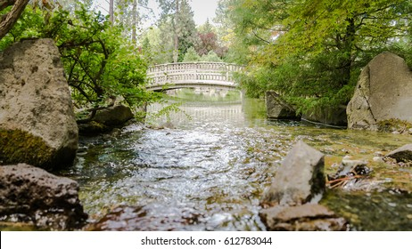 bridge over a tranquil koi pond in the Japanese garden