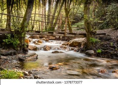 Bridge over a wooded stream in figueiro dos vinhos, leiria, portugal.