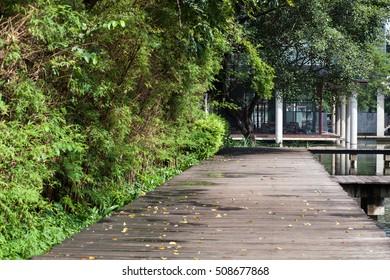 The bridge in the park