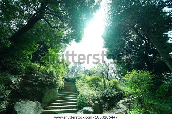 https://image.shutterstock.com/image-photo/bridge-park-600w-1053206447.jpg