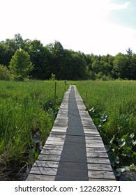 Bridge path at the Jamestown Audubon
