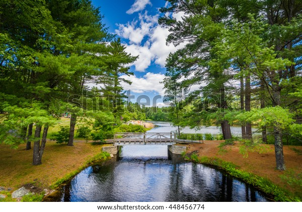 Bridge and pine trees at Bear Brook State Park, New Hampshire.