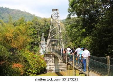 Bridge. Royal Botanic Gardens. Peradeniya. Kandy.  Sri Lanka.