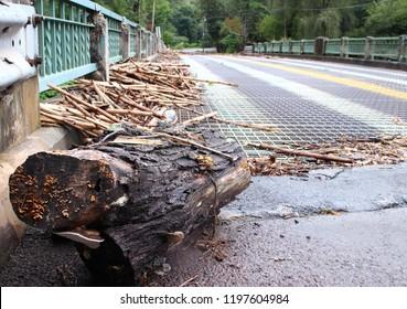 Bridge Ruin After A Flood