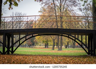 Bridge in Slovak park in the fall