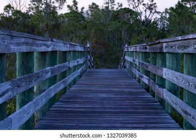 A bridge to some where. this bridge is in the nature park in Punta Gorda, Florida. This is just minutes away from the Gulf of Mexico.