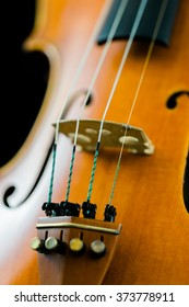 Bridge and strings