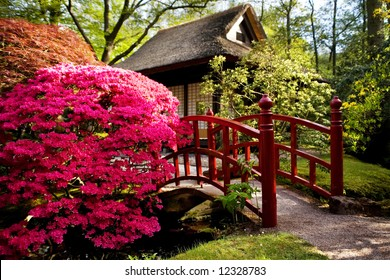 bridge and tea house in japanese garden