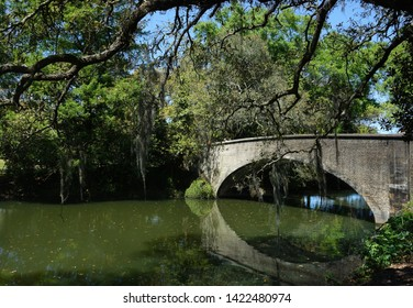 A bridge and trees with Spanish moss in Audubon Park, New Orleans