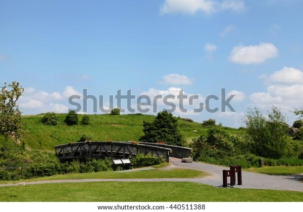 Bridge at Trim Castle