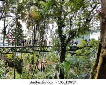 The bridge view on Penang Hill