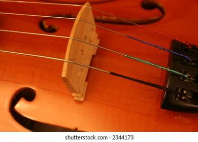 Bridge of violin muscial instrument