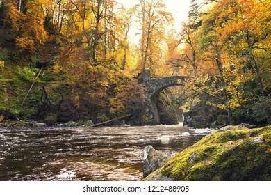 Bridge in the woodlands during autumn in the Hermitage, Dunkeld