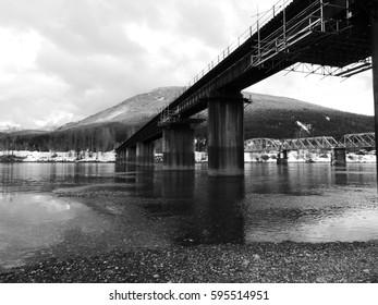 bridges in black and white