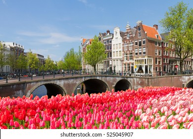 bridges of canal ring at sunny spring day with tulips, Amsterdam, Netherlands