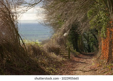 Bridleway on Bredon Hill, Worcestershire