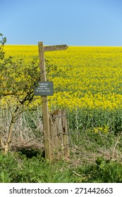 Bridleway through the Hampshire Countryside. Sign board against a yellow background.