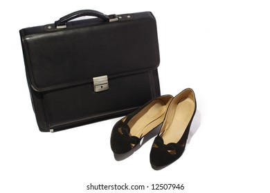 briefcase from skin and feminine loafers