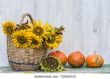 bright autumn composition with pumpkins and sunflowers in wicker basket