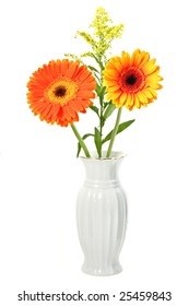 bright autumn flowers on a white background