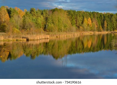 Bright autumn forest with reflection of forest in lake water