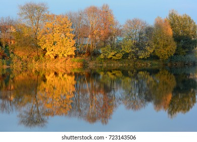 Bright autumn landscape with park and water pond. Nature falling background with clear blue sky.