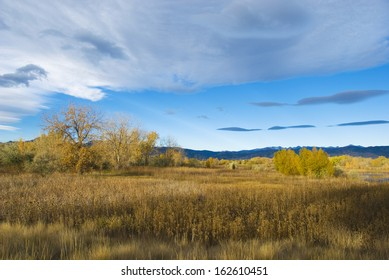 Bright autumn scene in the early morning in a wetlands refuge area on the Colorado prairie