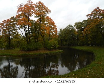 Bright autumn trees near the water, landscape