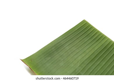 Bright Banana Leaf on White  Background,one side of banana leaf  for support the food and dessert