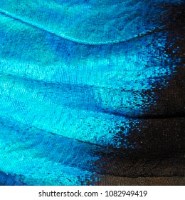 A bright blue opalescent fragment of a wing of the blue morpho butterfly, Morpho peleides. Cells, veins and scales of a butterfly wing are perfectly seen on the high magnification picture. Big image.