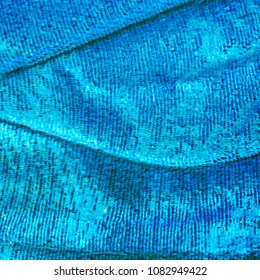 A bright blue opalescent fragment of a wing of the blue morpho butterfly, Morpho peleides. Cells, veins and scales of a butterfly wing are perfectly seen on the high magnification image.