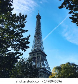 The bright blue sky and dark trees that frame the Eiffel tower in the French capital of Paris.