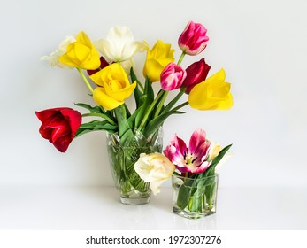 bright bouquet of multicolored tulips for your birthday for your beloved