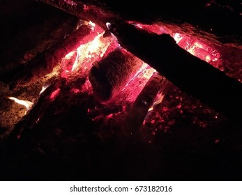 Bright campfire with wood in the nature