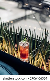 bright cocktail in a beautiful glass neon lighting and plants background